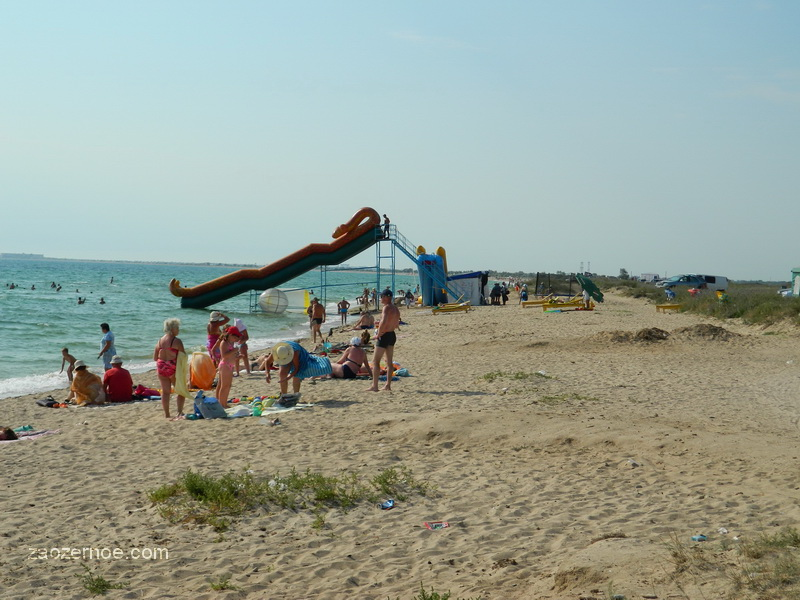 Смотреть дики видю пляж фото 705-876